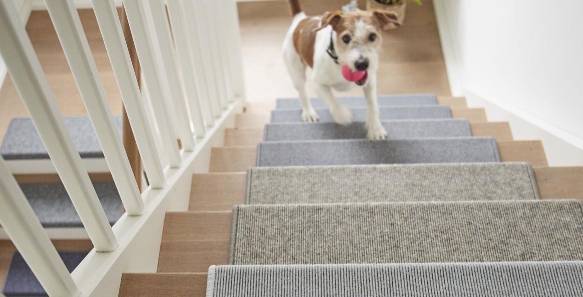 Tapijt Voor Gang : Tretford tapijt ijzersterke vloerbedekkingen in kleuren